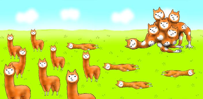 alpaca-evolution-main-2
