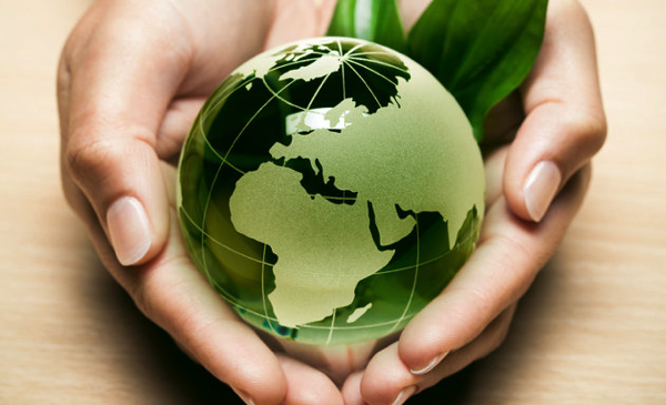 Eco World hand