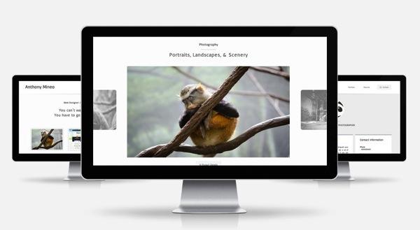 portfolio_pagine.jpg