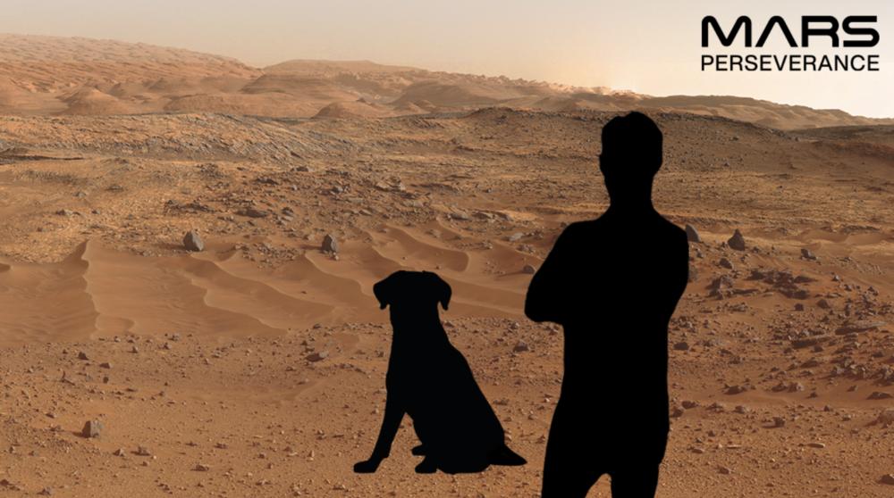 Sul sito della Nasa si può fare un Selfie da Marte