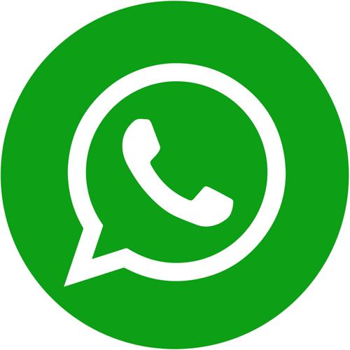 Condividi su WhatsApp