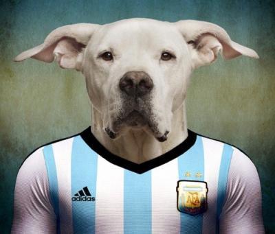 10 ritratti di calciatori trasformati in cani