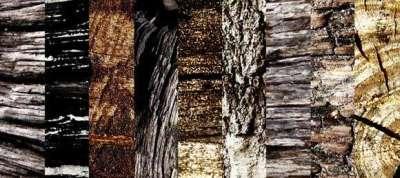 155 brushes per Photoshop di texture