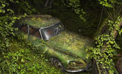 17 fotografie di auto abbandonate che sembrano zombie