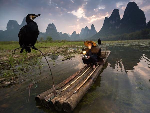 20 migliori foto del National Geographic per il 2015