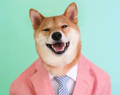 20 ritratti di persone trasformate in cani