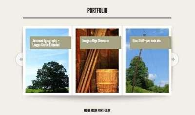 20 temi moderni per wordpress a singola pagina