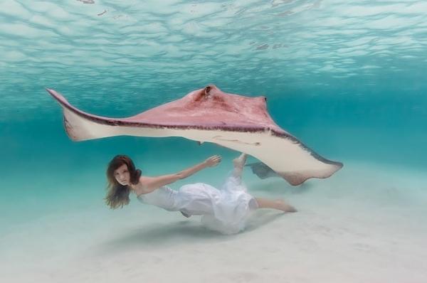 24 fotografie subacquee dalle bahamas