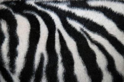 30 e oltre texture di Zebra