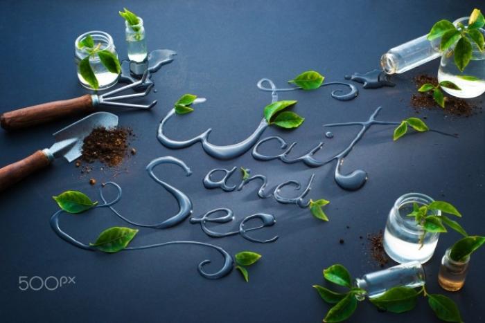 30 idee e fotografie di arte legate alla pubblicità del cibo
