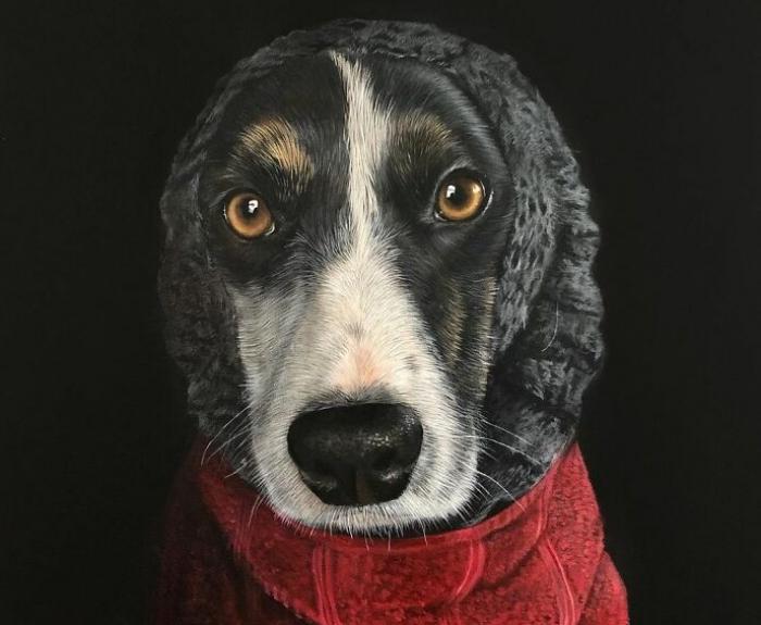 34 dipinti iperrealisti di animali da una artista da vedere e piacere