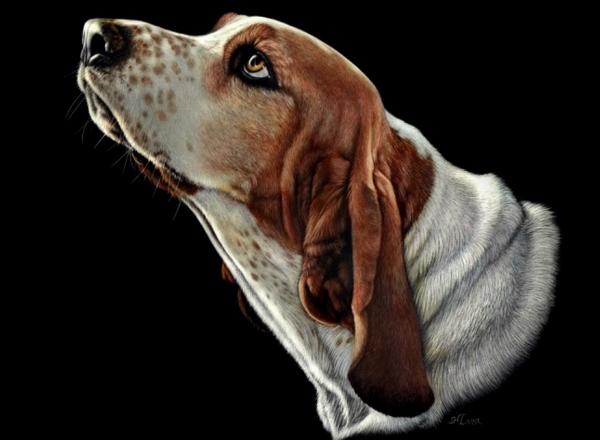 35 bellissimi dipinti dedicati ai cani