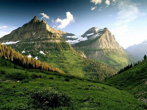 35 incredibili esempi di fotografie di natura