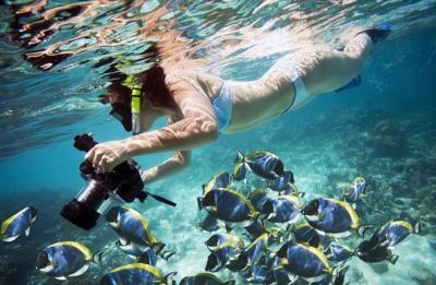 50 fantastici esempi di fotografie subacquee