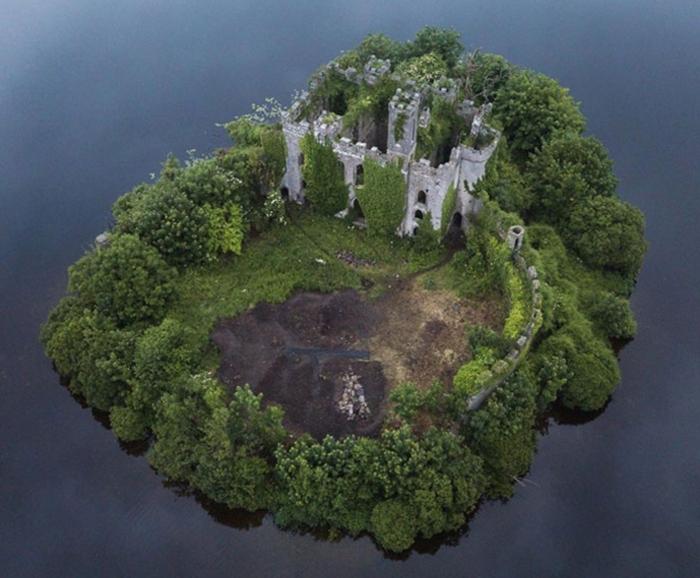 50 volte in cui la natura reclama il suo spazio nella civilizzazione