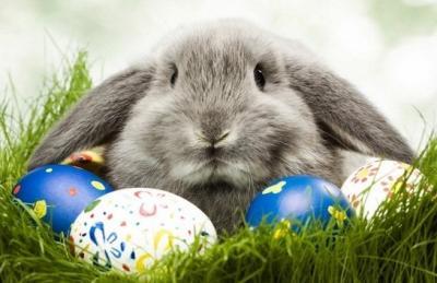 55 e oltre stupendi sfondi di Pasqua