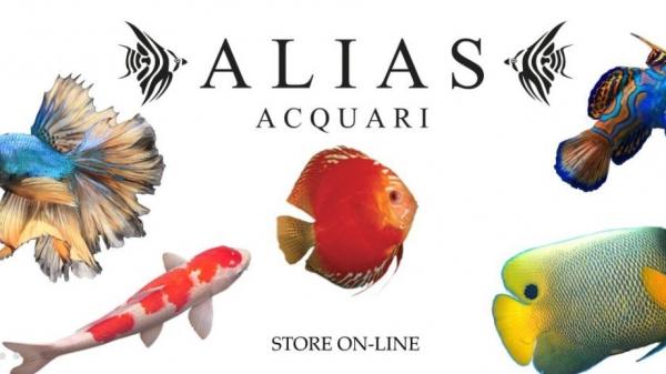 Aliasacquari.it