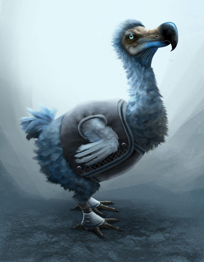 Blu Dodo
