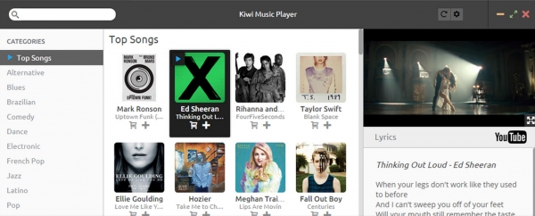 Kiwi Music Player
