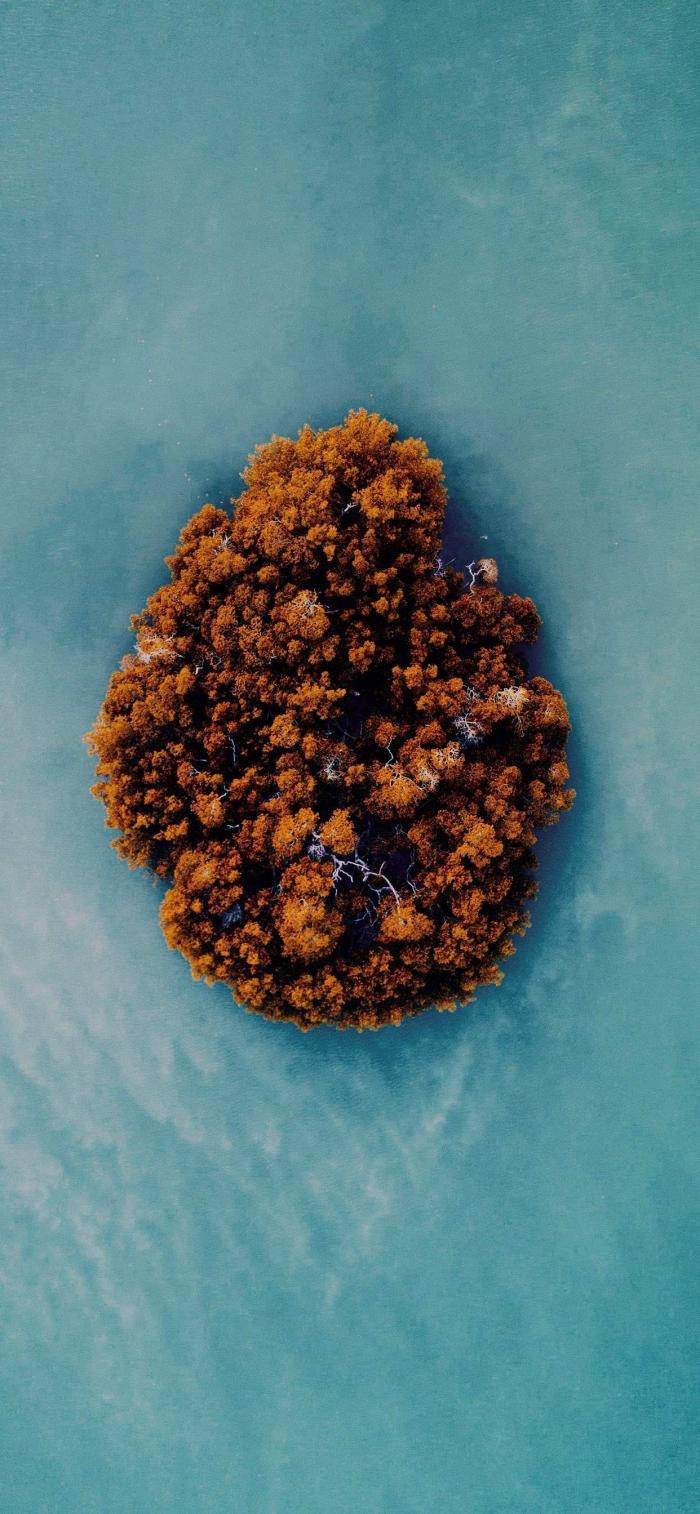 L'isola nel blu