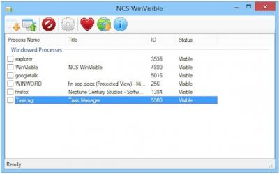 NCS WinVisible