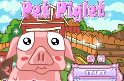 Piggy Pet Care