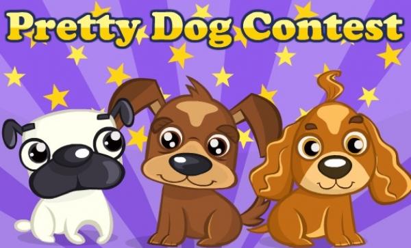 Pretty Dog Contest