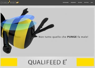 Qualifeed.info