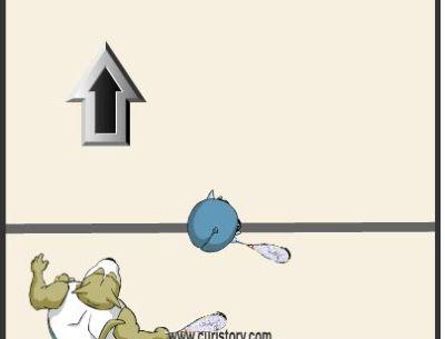 Squash Flash Game