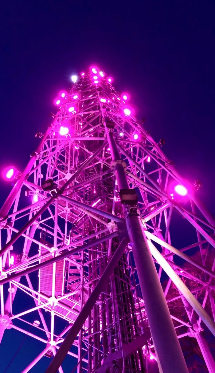 Torre Branca in porpora