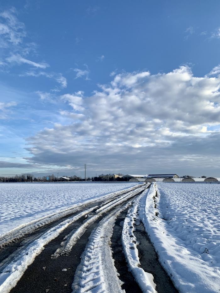 Tracciato tra la neve