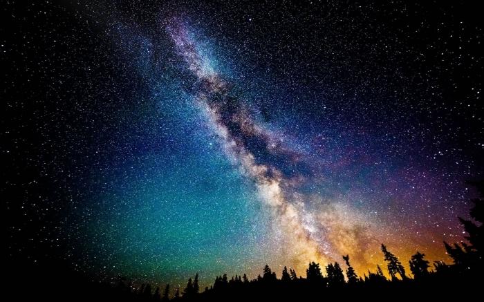 Via Lattea dalla foresta