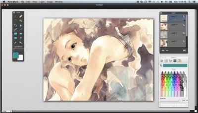 Waveinsight Paint Desk for Mac