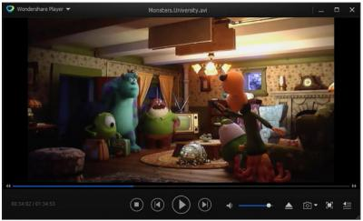 WS Video Player