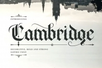 40 fonts dallo stile Old English