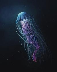 Medusa nel profondo blu