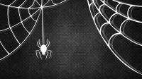 Tela di ragno in nero