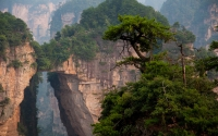 Zhangjiajie National Park in China